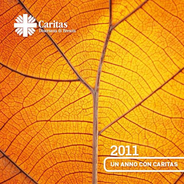 Un anno con Caritas 2011