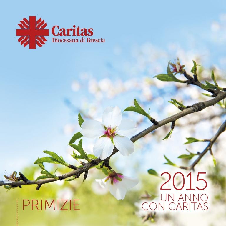 Un anno con Caritas 2015